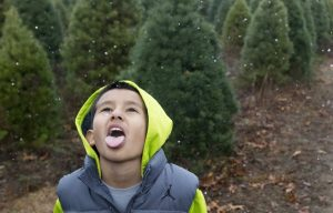 Daniel Hernandez, 9, Goshen, tries to catch snowflakes on his tongue while his family cuts down their Christmas tree late in the day Thursday, Dec. 2, 2015, at Eby's Evergreen Plantation in Bristol.