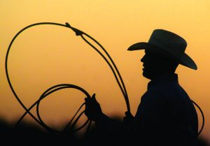 Becky Malewitz/Telegram A cowboy gets ready for Thursdays Tie-Down Roping contest.
